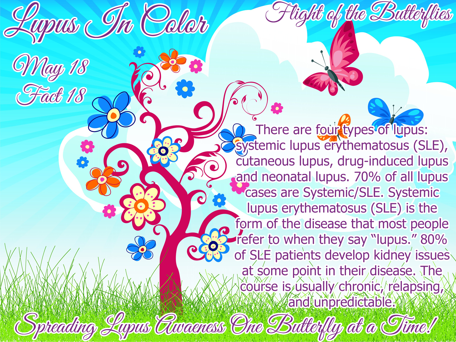 Lupus in color page 43 lupus in color there are four types of lupus systemic lupus erythematosus sle cutaneous lupus drug induced lupus and neonatal lupus 70 of all lupus cases are biocorpaavc Image collections